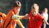 Młode Wilki 98 dziewiątej w Lech Cup